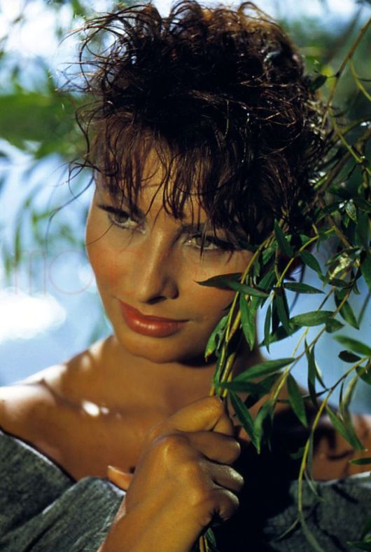 1957: Italian actress Sophia Loren as she appeared in the United Artists production of 'The Pride and The Passion', directed by Stanley Kramer.