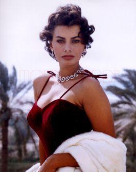 MONDO MODA Sophia Loren4