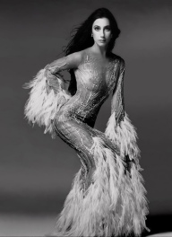 1974 Cher-Feathers-Sheer-Dress-Gown (1)