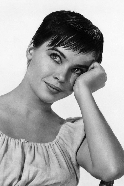 Leslie Caron, 1955, Pixie Cut @ Divulgação