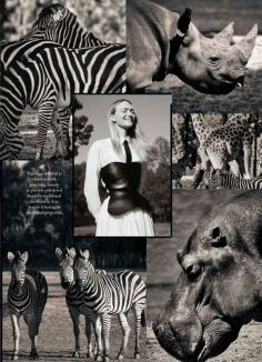 Gemma Ward - Harpers Bazaar Australia - Novembro 2018 @ Georges Antoni (7)