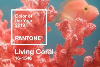 Pantone 2019 Living Coral