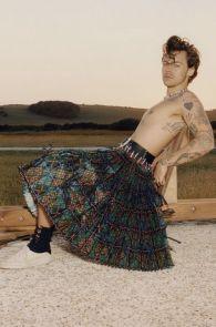 Harry Styles Vogue US Dez 2020 @ Tyler Mitchell (9)
